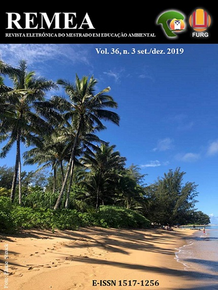 Imagem de uma praia em dia de verão, com muitas árvores, a maioria palmeiras.